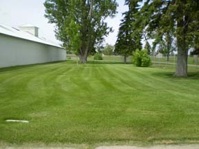 Front View of Grass Area